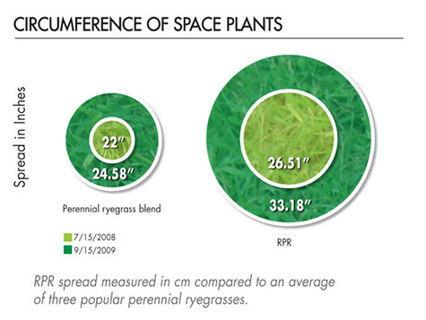 RPR Space Plants